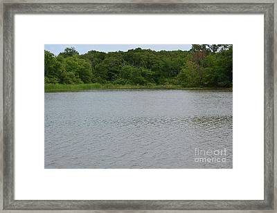 City Lake Framed Print by Ruth Housley