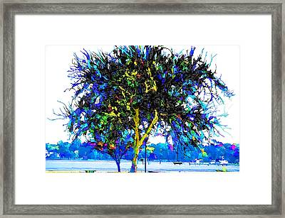 City Park 7 Framed Print by Lanjee Chee