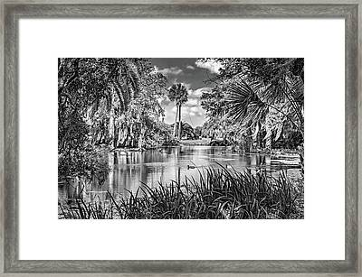 City Park Lagoon 3 Bw Framed Print by Steve Harrington