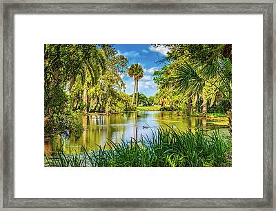 City Park Lagoon 3 Framed Print by Steve Harrington