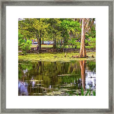City Park Lagoon - Waterfowl Watching Framed Print by Steve Harrington