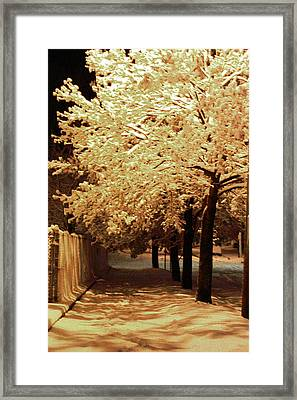 Framed Print featuring the photograph City Snow Light by Angelique Bowman