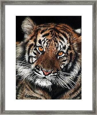 CJ Framed Print by Linda Becker