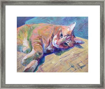 Cj The Blonde Tabbie Cat Framed Print