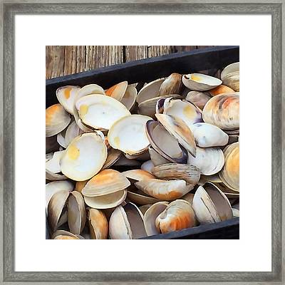 Clam Shells Framed Print