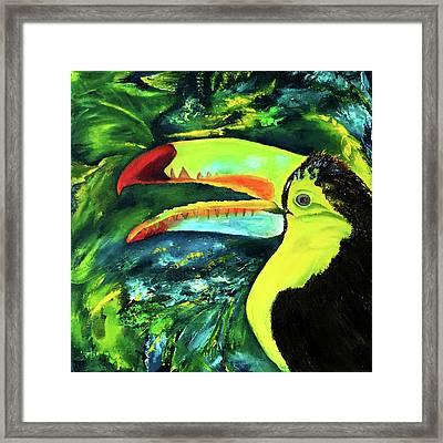 Clara's Toucan Framed Print