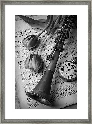 Clarinet In Black And White Framed Print by Garry Gay