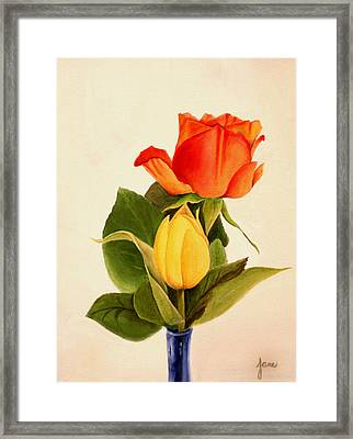 Clarity Framed Print by Jane Autry