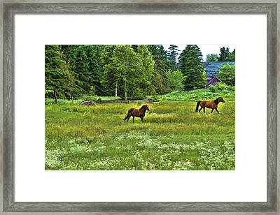 Framed Print featuring the photograph Classic Country by Gary Smith