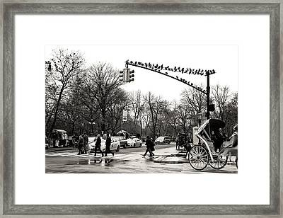 Classic Grand Army Plaza Framed Print by John Rizzuto