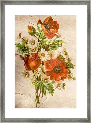Classic Vintage Shabby Chic Rustic Poppy Bouquet Framed Print