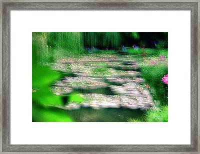 Framed Print featuring the photograph Claude Monets Water Garden Giverny 1 by Dubi Roman