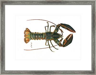 Clawed Lobster Art Framed Print