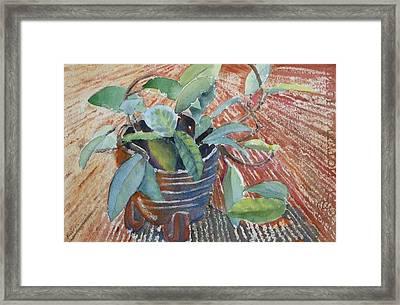 Clay Pot Framed Print by Ruth Kamenev