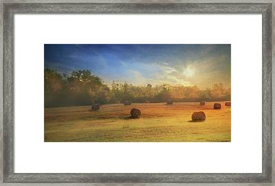 Clayton Morning Mist Framed Print by Lori Deiter