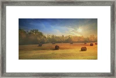 Clayton Morning Mist Framed Print
