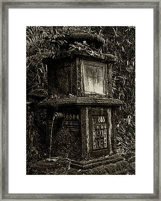 Framed Print featuring the photograph Clean Water by Amarildo Correa
