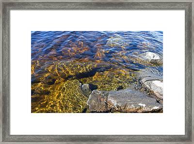 Clean Water Framed Print