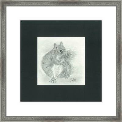 Cleaning Her New Tail Framed Print by Danielle McCoy