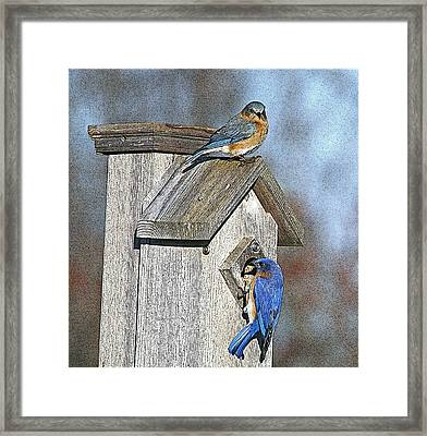 Cleaning House Framed Print by Robert Pearson