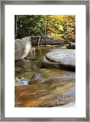Clear And Cold Framed Print by Patti Whitten
