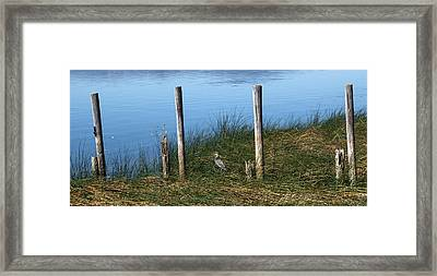 Clear Lake Framed Print