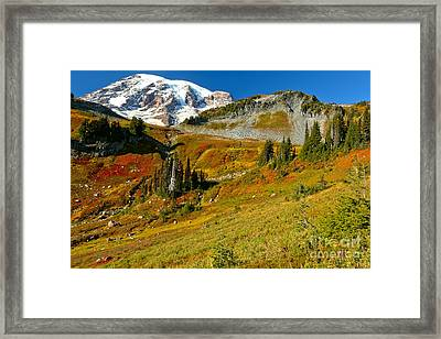 Clear Skies Over Paradise Meadows Framed Print by Adam Jewell