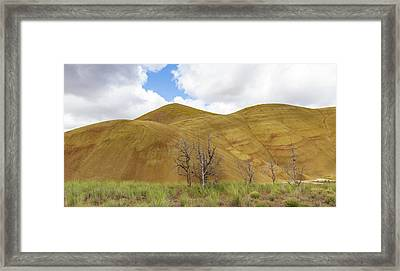 Clear Sky At Painted Hills Framed Print by Jean Noren