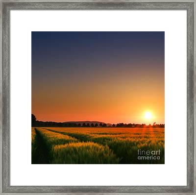 Clear Sunset Framed Print