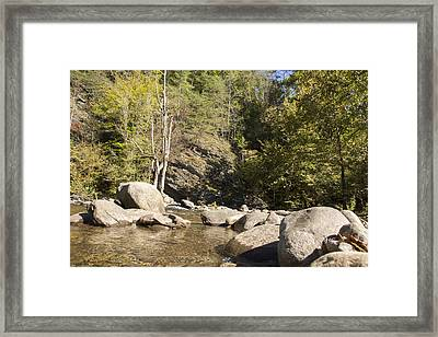 Clear Water Stream Framed Print by Ricky Dean
