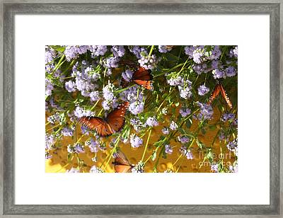 Cleared For Takeoff Framed Print