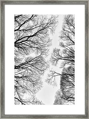 Clearings Framed Print by Matti Ollikainen