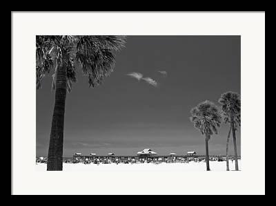 Paradise Pier Framed Prints