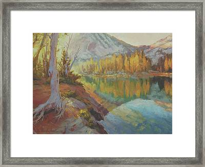 Clearwater Revival Framed Print