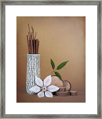 Clematis Flower Still Life Framed Print by Tom Mc Nemar