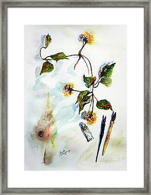 Clematis Seed Pods Still Life And Objects Framed Print by Ginette Callaway