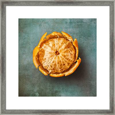 Clementine Framed Print by Scott Norris