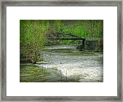 Cleveland Metropark Bridge Framed Print by Joan  Minchak