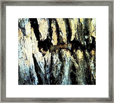Framed Print featuring the photograph Cliff Dwellings by Lenore Senior