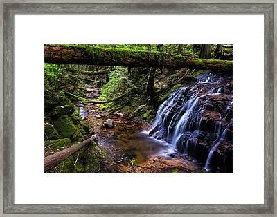 Cliff Gilker Park Framed Print