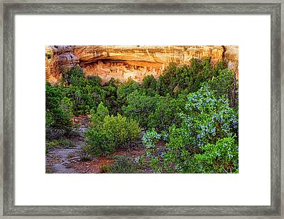 Framed Print featuring the photograph Cliff Palace At Mesa Verde National Park - Colorado by Jason Politte