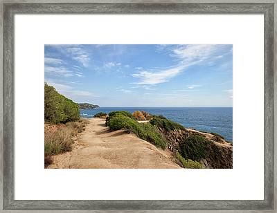Cliff Top Path At Mediterranean Sea Framed Print by Artur Bogacki
