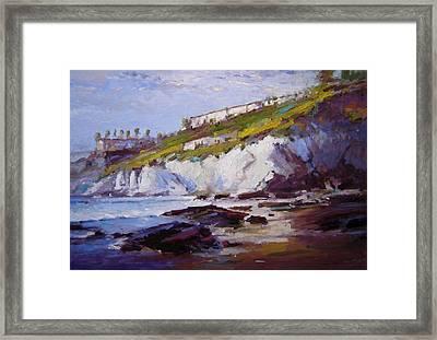 Cliffs At Pismo Beach Xx Framed Print by R W Goetting