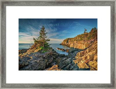 Cliffs Of Quoddy Head State Park Framed Print