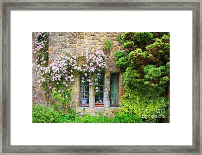 Climbing Clematis. Framed Print by ShabbyChic fine art Photography