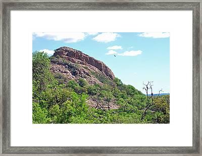 Framed Print featuring the photograph Climbing Rock by Teresa Blanton