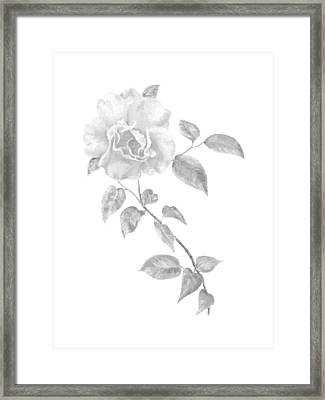 Framed Print featuring the painting Climbing Rose II by Elizabeth Lock