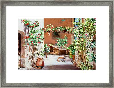 Climbing Roses In La Treille Courtyard Framed Print by Dominique Amendola