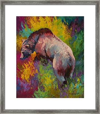Climbing The Bank - Grizzly Bear Framed Print by Marion Rose