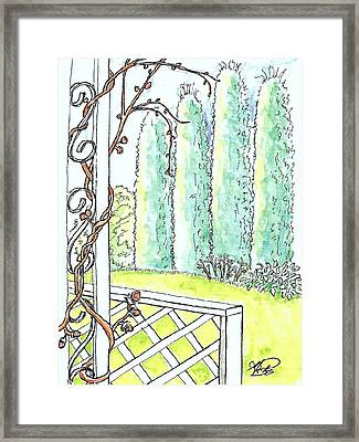 Clinging Vine Framed Print by George I Perez